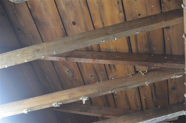 My breezeway and garage have 2x4 rafters :(-cake-001-small-.jpg