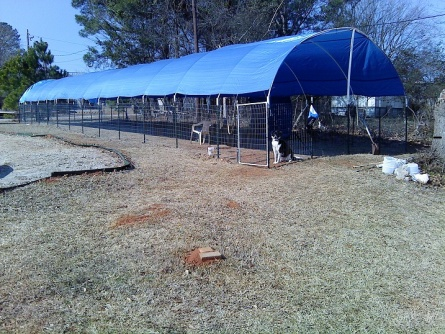 Rafter spacing for tarp covered canopy-canopy-tarp-1.jpg