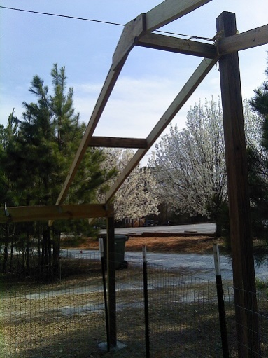 Rafter Spacing For Tarp Covered Canopy Roofing Siding