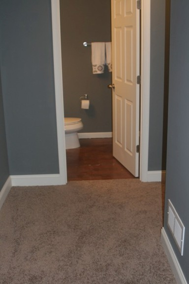 Basement Project-carpet-005.2.jpg