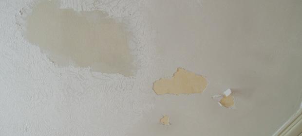 Skim Coat On Ceiling Is Bubbling 4730 Jpg