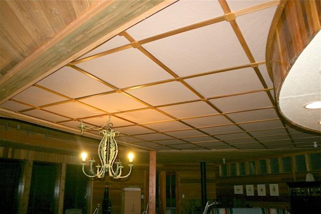 Gulf Island Building.-ceiling-done.jpg