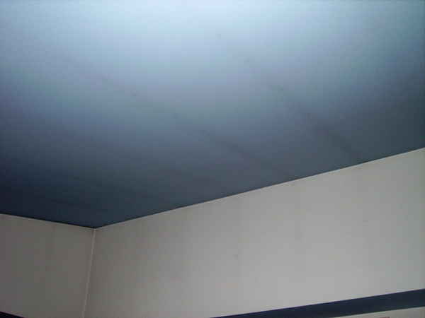 Thermal Tracking- Why is there dirt EVERYWHERE?-ceiling.ex.1.jpg