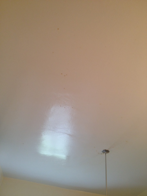 Spots On Bathroom Ceiling Painting
