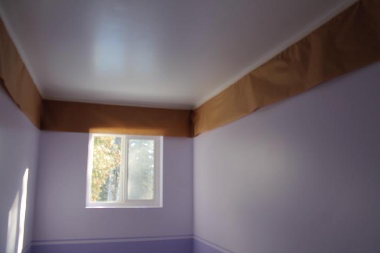 Shuswap Life-ceiling1.jpg