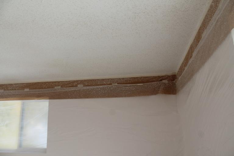 Shuswap Life-ceiling10.jpg