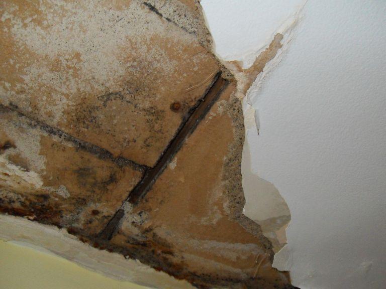 Repairing Plaster Ceiling 3 x5 Hole Drywall & Plaster DIY
