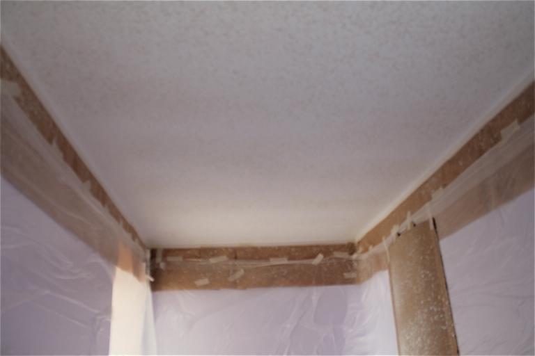 Shuswap Life-ceiling9.jpg