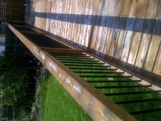 Cedar Deck Stain Failure - Sand or Strip?-chatham-kent-20130501-01549.jpg