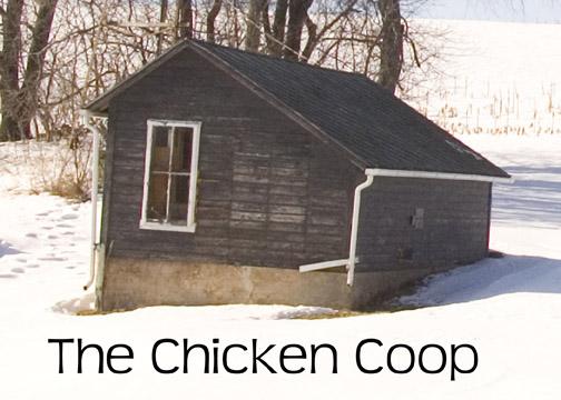 Eradicating Pests during Remodeling-chicken-coopweb.jpg