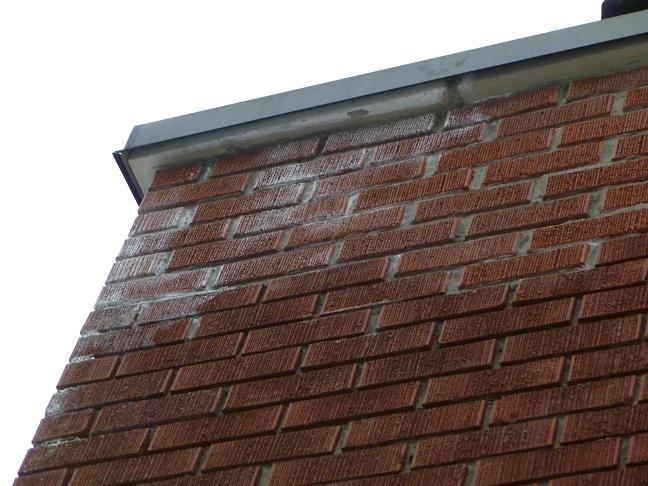Efflorescence on Top of Chimney-chimney000889.jpg