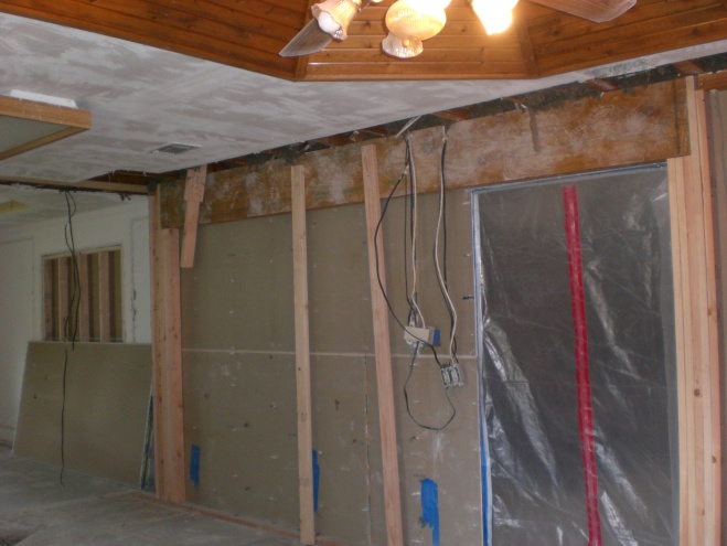 Renovation Project: New Kitchen - Ongoing-cimg2432.jpg
