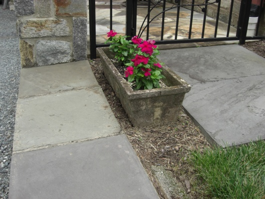 What to use for better drainage under flower pot?-cimg3173.jpg