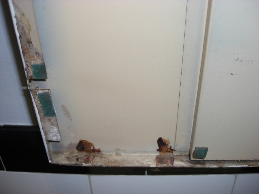 Question re cleaning up rusty metal medicine cabinet-cimg3321.jpg