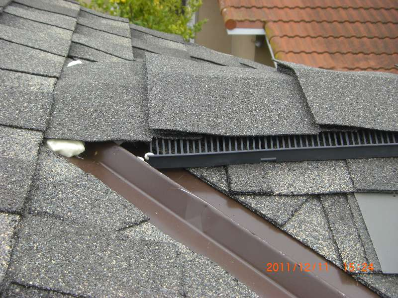 My new roof seems to not be rodent-proof-cimg8849_s.jpg