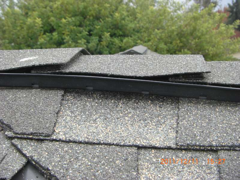 My new roof seems to not be rodent-proof-cimg8856_s.jpg