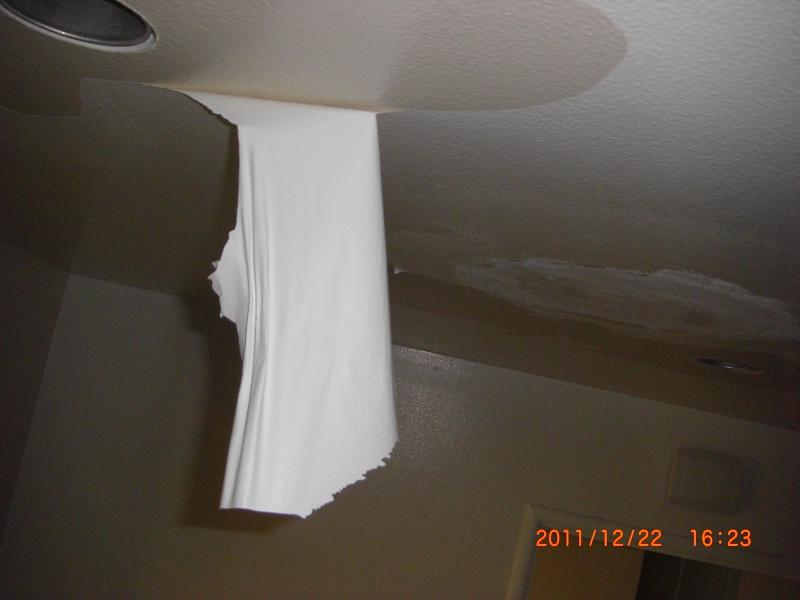 Kitchen ceiling paint is peeling in sheets!-cimg8888_s.jpg