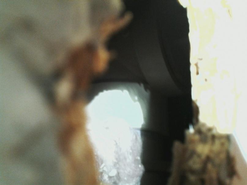 access panel preventing basement bath conversion?-cleanout3.jpg