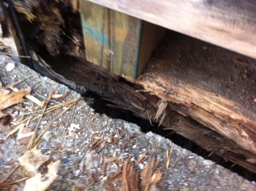 rotted girder on posts balloon frame-close-up.jpg
