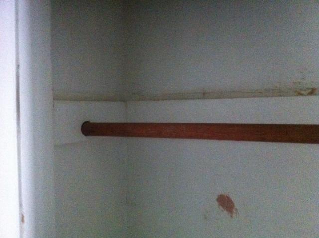 What should I do with this closet?-closet4.jpg