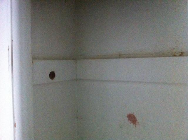What should I do with this closet?-closet5.jpg