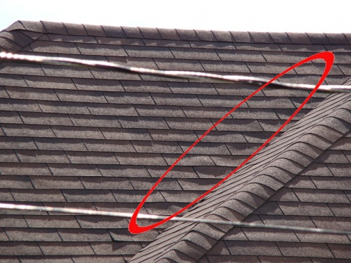 Something pushing up my shingles???-closeup.jpg