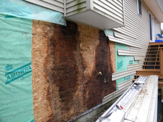 Vinyl sided chimney on side of house - rotting OSB-clough-rot-repair-2010-014.jpg