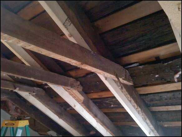 Raising Ceiling-collar-tie-west-side.jpg