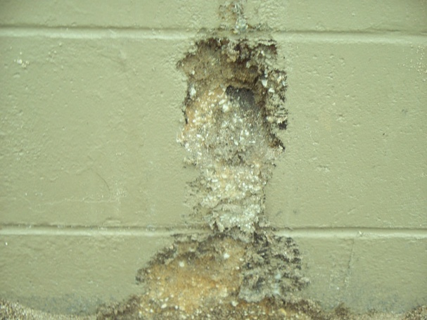 Something seems to be eating concrete-concrete-teeth-marks.jpg
