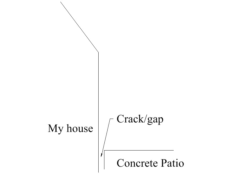 Sealing a foundation gap?-crack.jpg