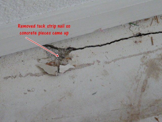 Crack in Foundation.....oh my...help!-crack3.jpg