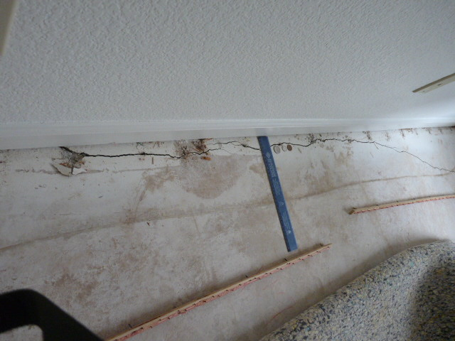Crack in Foundation.....oh my...help!-crack6.jpg