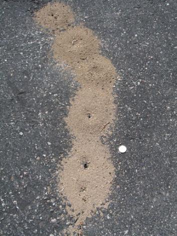 Driveway Cracks-crack_3.jpg