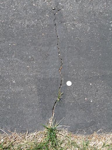 Driveway Cracks-crack_4.jpg