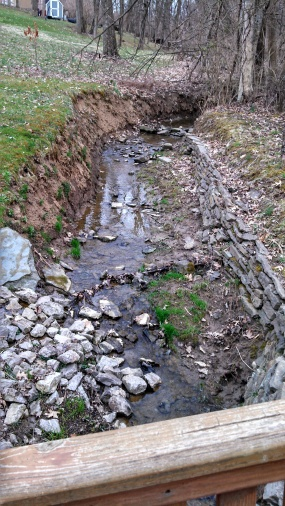 Water pipe to place in creek bed-creek-2.jpg