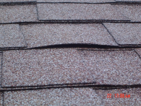 New roof install shingles are cupped.-cupped-shingle.jpg