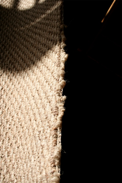 Carpet on stair treads only???-cut-edge-2.jpg