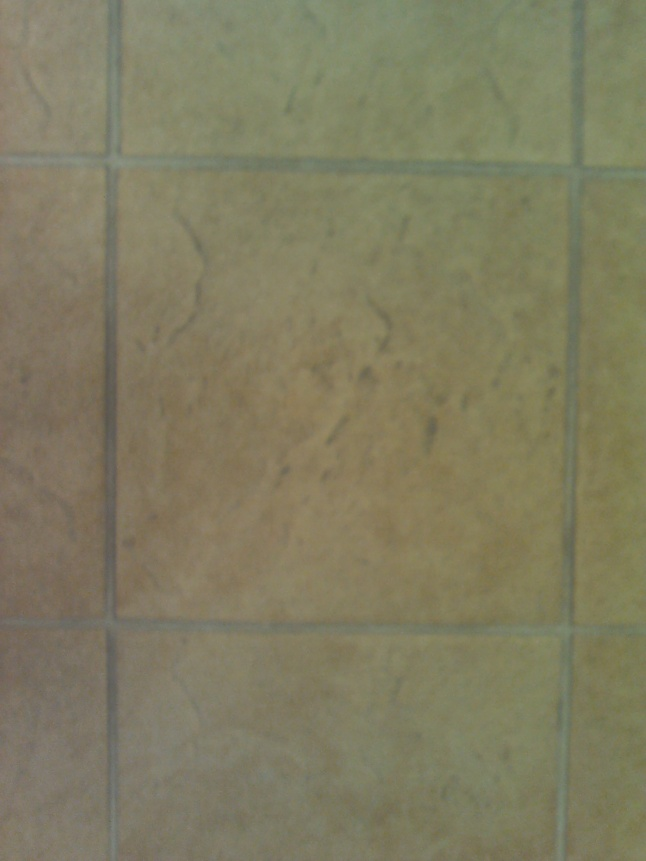 Cleaning a certain tile with a side by side machine. Help Please.-d-007.jpg