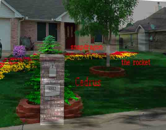 New landscaping need plant ideas..-d120514.jpg