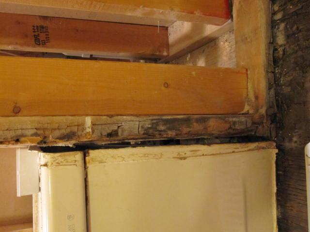 Bathroom Reno Challenges-damaged-stud-sole-plate.jpg