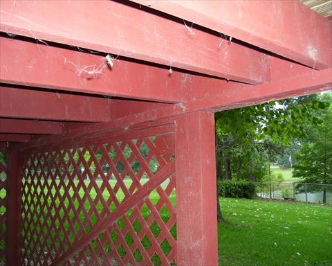 Post Beam Connectors,Pictures-deck-002.jpg