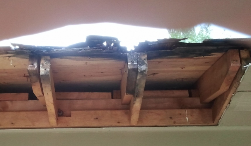 Rotted decking, soffit, and fascia-decking-rot.jpg