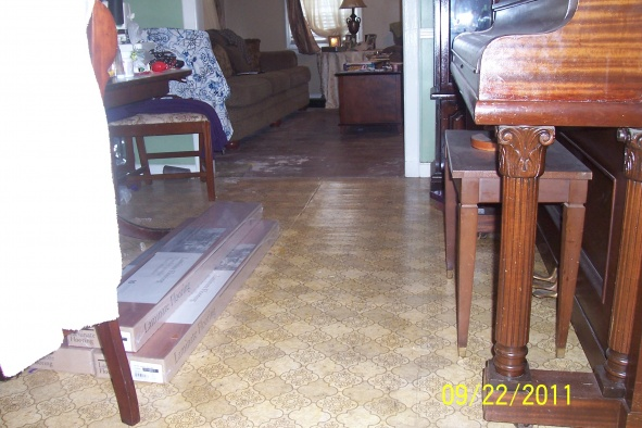 floor leveler?-dining-room-ii.jpg