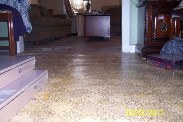 floor leveler?-dining-room-iii.jpg