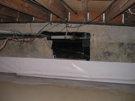 Who is the duty expert on water intrusion?-dirt-floor-opening.jpg