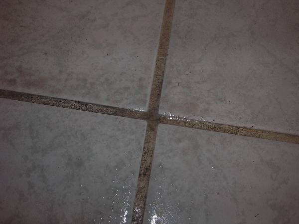 cleaning difficult grout stains?-dirty-wet-grout-lines.jpg