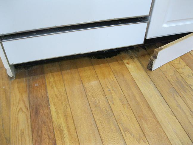 My house's previous owner - DIY horror stories-dishwasher-001.jpg
