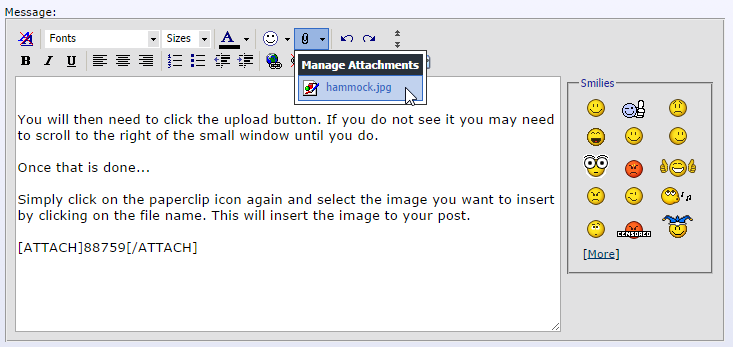 How To Insert Images Into Your Posts-diy-4.png