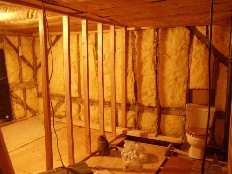 using come along to pull in wall-diy6-back-wall.jpg