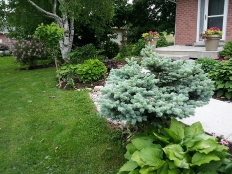 A little garden how-to-done.jpg
